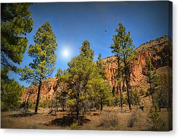 Canyon Crossing Canvas Print by Diana Angstadt