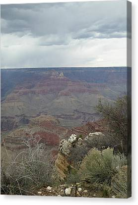 Canyon Edge Canvas Print by Gordon Beck