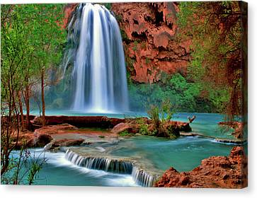 Canyon Falls Canvas Print