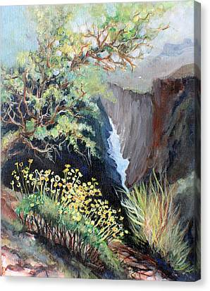 Canyon Land Canvas Print