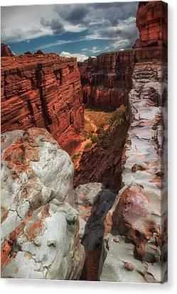 Canyon Lands Quartz Falls Overlook Canvas Print by Gary Warnimont