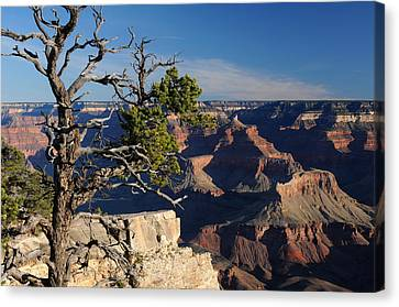 Canyon Landscape Canvas Print by Cyril Furlan