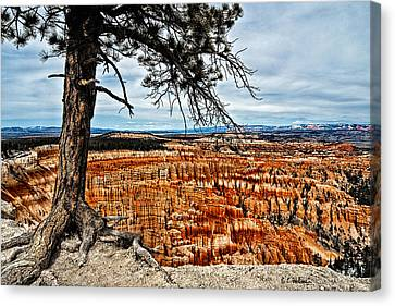 Canyon Overlook Canvas Print by Christopher Holmes