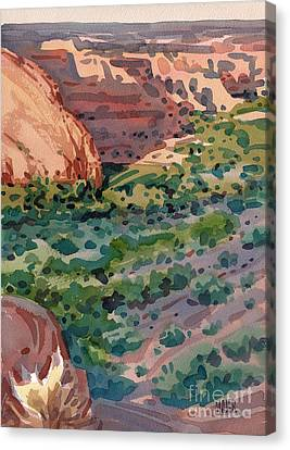 Canyon Shadows Canvas Print by Donald Maier