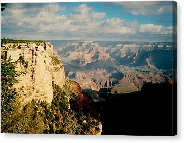 Canyon Shadows Canvas Print by Fred Wilson