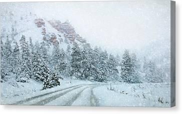 Canyon Snow Canvas Print by Lori Deiter