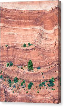 Canyon Wall Abstract Canvas Print by Joseph Smith
