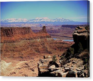 Canyonlands 5 Canvas Print by Marty Koch