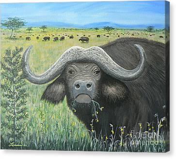 Cape Buffalo Canvas Print by Don Lindemann