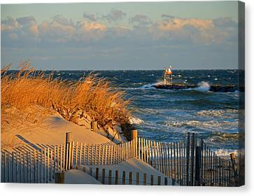 Cape Cod Bay - Dunes In Winter Canvas Print by Dianne Cowen