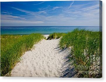 Cape Cod Bay Canvas Print by Susan Cole Kelly