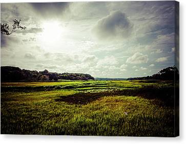 Cape Cod Marsh 1 Canvas Print by Frank Winters