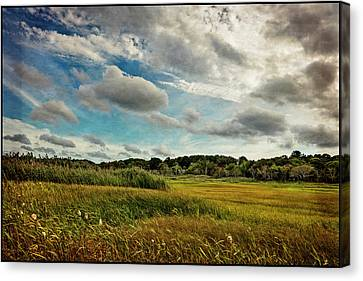 Cape Cod Marsh 2 Canvas Print by Frank Winters