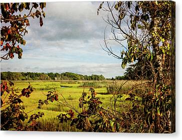 Cape Cod Marsh 3 Canvas Print by Frank Winters