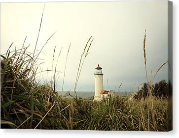 Cape Disappointment Canvas Print by Todd Klassy