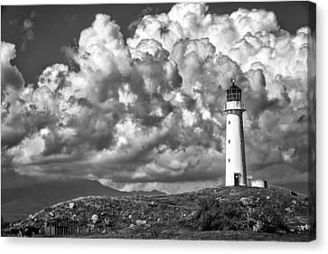 Cape Egmont Storm 2 Canvas Print by Russ Dixon