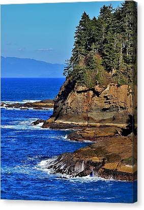 Cape Flattery Canvas Print by Stacie Gary