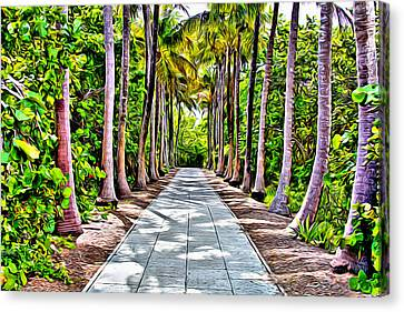 Cape Florida Walkway Canvas Print by Anthony C Chen