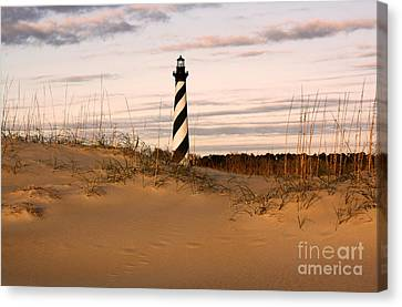 Cape Hatteras Lighthouse Canvas Print by Tony Cooper