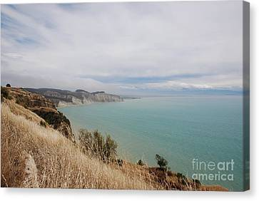 Canvas Print featuring the photograph Cape Kidnappers Golf Course New Zealand by Jan Daniels