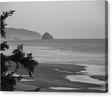 Cape Kiwanda Canvas Print by Angi Parks