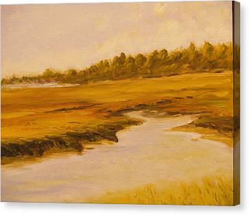 Cape Marsh Canvas Print by Paul Galante