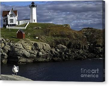 Cape Neddick Lighthouse Canvas Print by Mim White