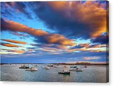 Cape Porpoise Canvas Print by Rick Berk