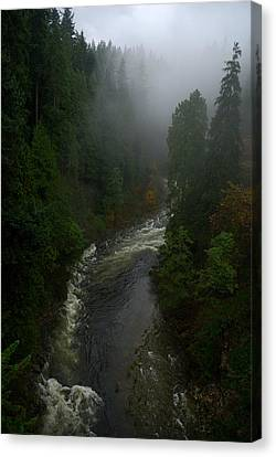 Canvas Print featuring the photograph Capilano Canyon by Steven Richman