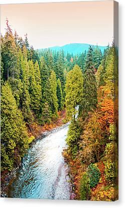 Capilano River Canvas Print