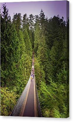 Capilano Suspension Bridge, North Vancouver, Canada Canvas Print