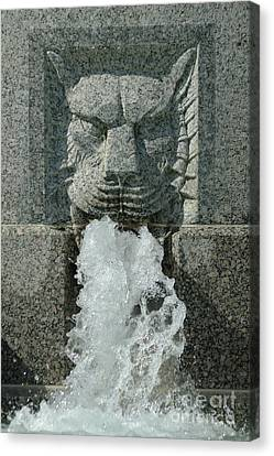 Senate Fountain Lion Canvas Print