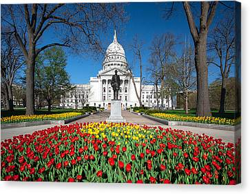 Capitol Tulips Canvas Print