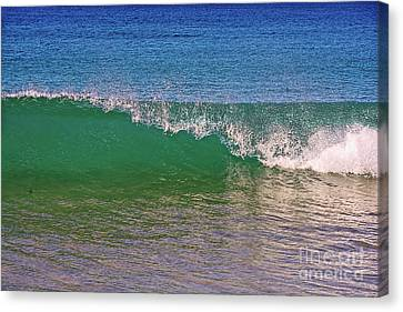 Capping Wave By Kaye Menner Canvas Print