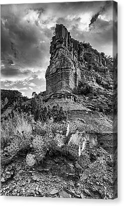 Canvas Print featuring the photograph Caprock And Cactus by Stephen Stookey