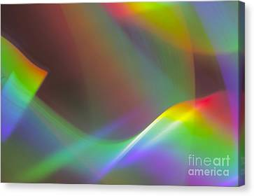 Canvas Print featuring the photograph Capture The Light by Danica Radman