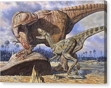 Carcharodontosaurus Guards Its Kill Canvas Print by Mark Hallett