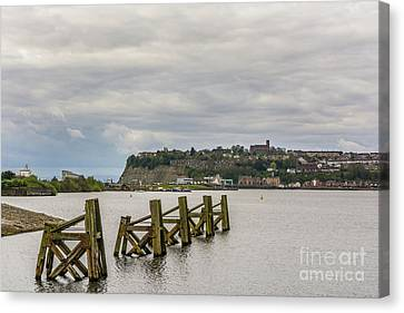 Cardiff Bay Dolphins Canvas Print by Steve Purnell