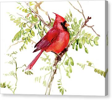 Cardinal Bird Canvas Print