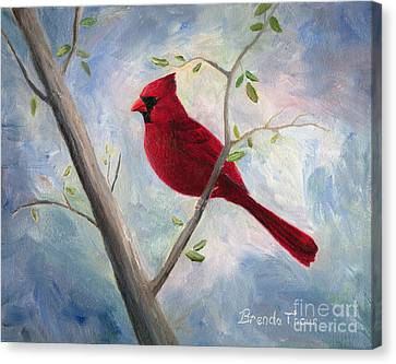Cardinal Canvas Print by Brenda Thour