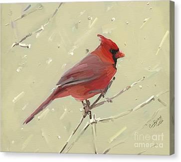 Cardinal Canvas Print by Carrie Joy Byrnes