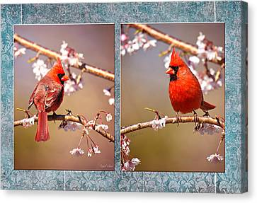 Cardinal Collage Canvas Print by Angel Cher