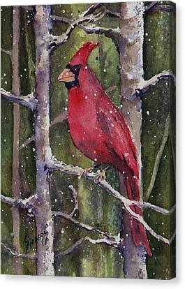 Cardinal Canvas Print by Sam Sidders