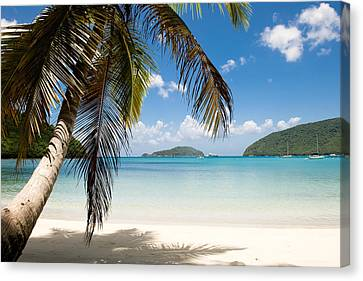 Caribbean Afternoon Canvas Print