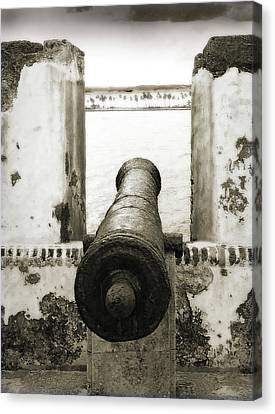 Caribbean Cannon Canvas Print by Steven Sparks