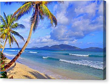 Caribbean Paradise Canvas Print by Scott Mahon