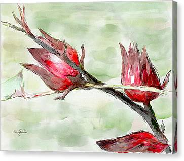 Caribbean Scenes - Sorrel Plant Canvas Print by Wayne Pascall