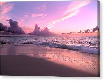 Caribbean Tranquility  Canvas Print by Betsy Knapp