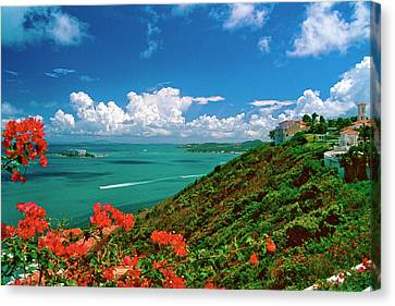 Caribbean Vista Canvas Print by George Oze