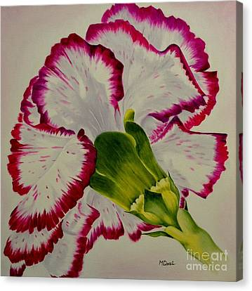 Carnation Canvas Print by Mary Deal